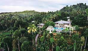 aarunya-nature-resort-spa-big-0